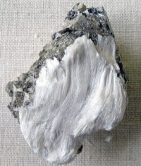 🧡 Asbesto significado y definición: Rae, OMS, Wikipedia niños